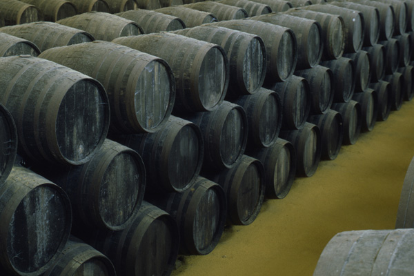 Wines maduration Montilla Moriles